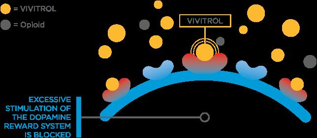 what-is-vivitrol-how-does-it-stop-opiate-cravings